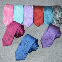Mens Paisley Pattern Polyester Neck Ties